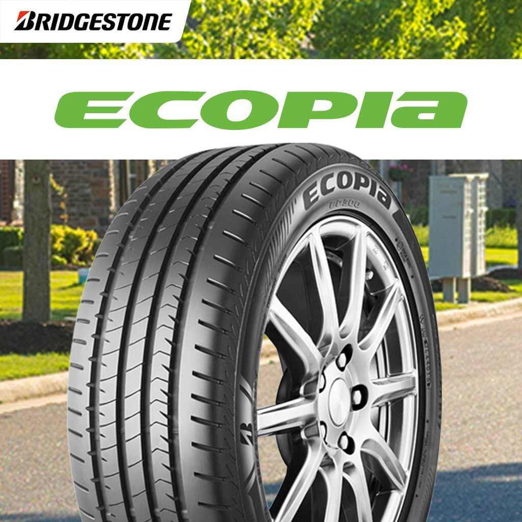 Safer Environment for all with Ecopia